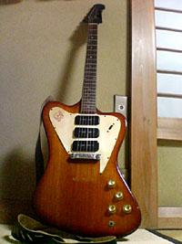 Gibson Fire Bird